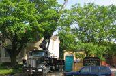 cranes and boom trucks 17